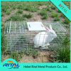 2017 hot sales Collapsible rabbit trap cage from china