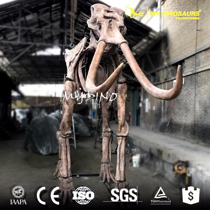Prehistoric animal skeleton-elephant.jpg