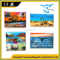 Professional production good quality acrylic fridge magnets