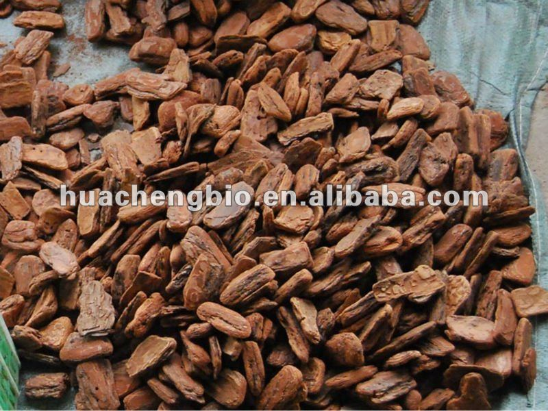 ISO&GMP Pine Bark P.E(95% OPC By HPLC)
