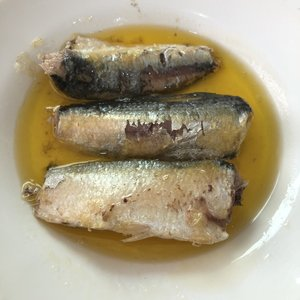 4.4oz Bulk Price Canned Sardine in Vegetable Oil