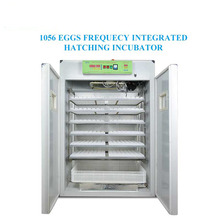 CE approved NLF-1056 Solar Egg Incubator for Hatching Eggs Directly Provided by Manufacturer