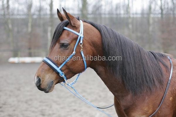 Bitless cabeçada E Rédea, não Hesite, Cavalo Pvc Preço de Fábrica de Produção