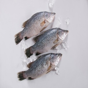 Cheap frozen fish,dried seafood packaging bag