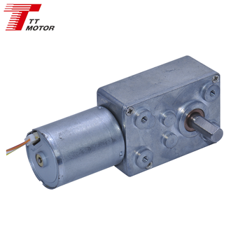 TWG3246-TEC2430 12v brushless dc motor with worm gearbox