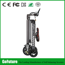 Hot Cheap New Best Selling Cargo Trike Gofuture Scooter