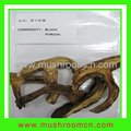 Hot sale Dried Black Porcini