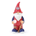 WASHINGTON NATIONALS BASEBALL GNOME