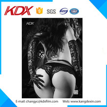 Hot Girl Sexy Picture 3D PET Lenticular Printing Photo Acrylic Resin 3D picture
