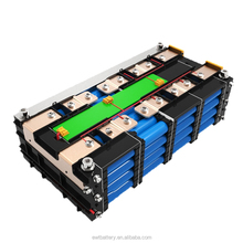 48v 100ah lithium ion car batteries sale for ebike with Battery Management Systems