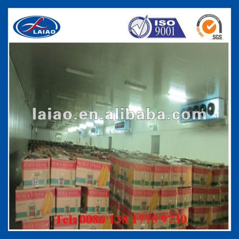 walk in cold storage ( meat ,fruits,food,ice,vegetables)