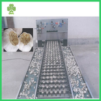 New design automatic dry garlic root cutting machine