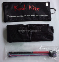 Outdoor ripstop foil kite for trainer