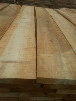 Paulownia lumber wood prices