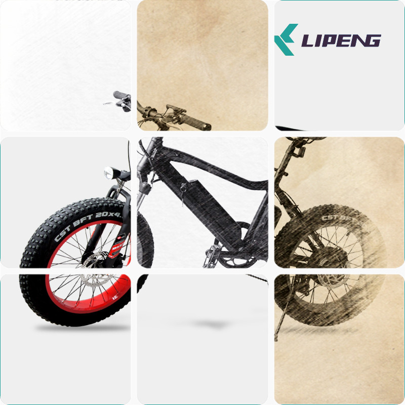 New product 36v 350w 20 inch fat tire ebike