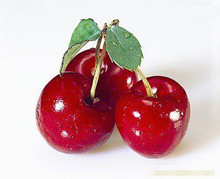100% natural High quality Acerola cherry extract/fruit powder
