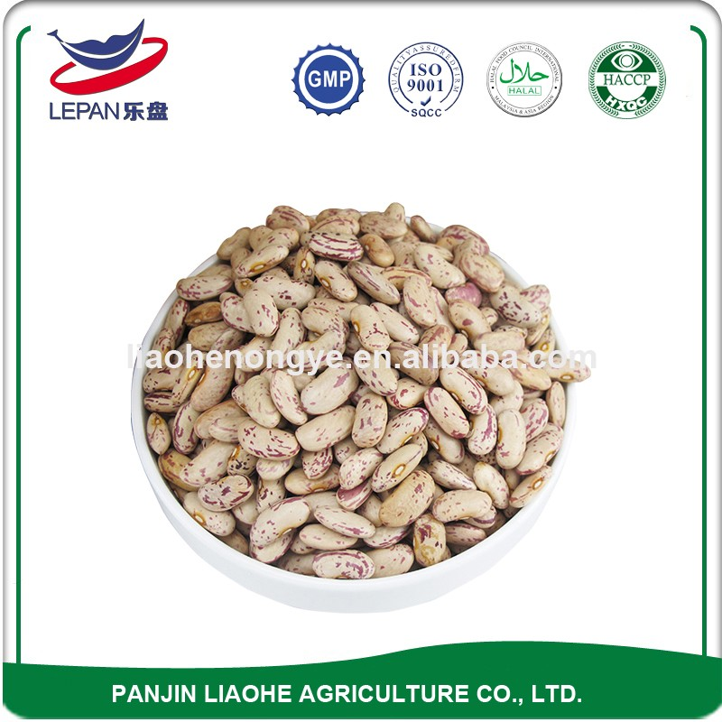 High Protein Free Sample Size 3.6mm and 3.8mm Wholesale Carioca Beans