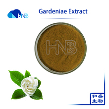 Pure Natural Fructus Gardeniae Extract / Cape jasmine wholesale