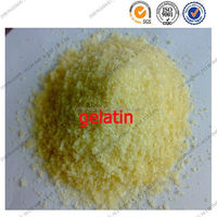 edible grade food emulsifier organic gelatin for Ice cream