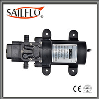 Sailflo 3.8L/min 24v dc 70 psi diaphragm water motor used for agriculture irrigation