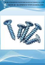 Factory Direct galvanized Colored self tapping screw Cross recessed pan head tapping screws Made in china