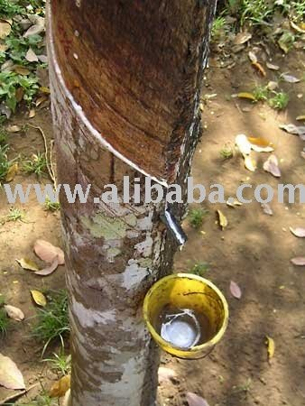 Natural Rubber Latex Concentrates 60% HA