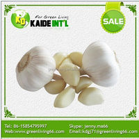 Big Production Ability 5.5 Cm Red China Garlic