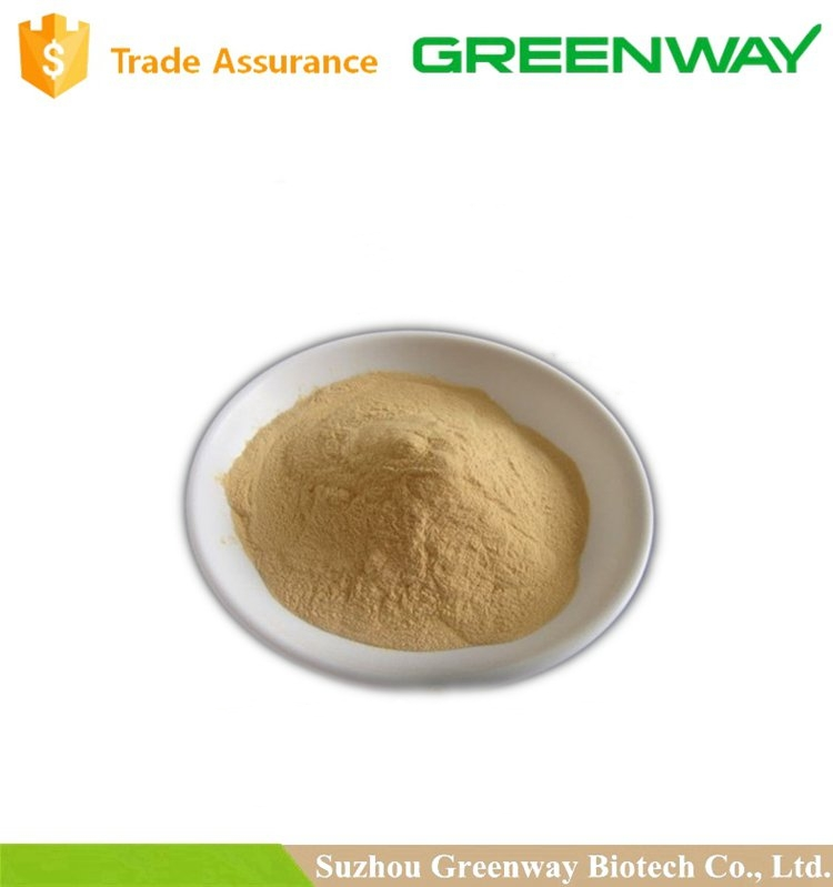 High Quality Manufacturer supply Mushroom Chitosan powder