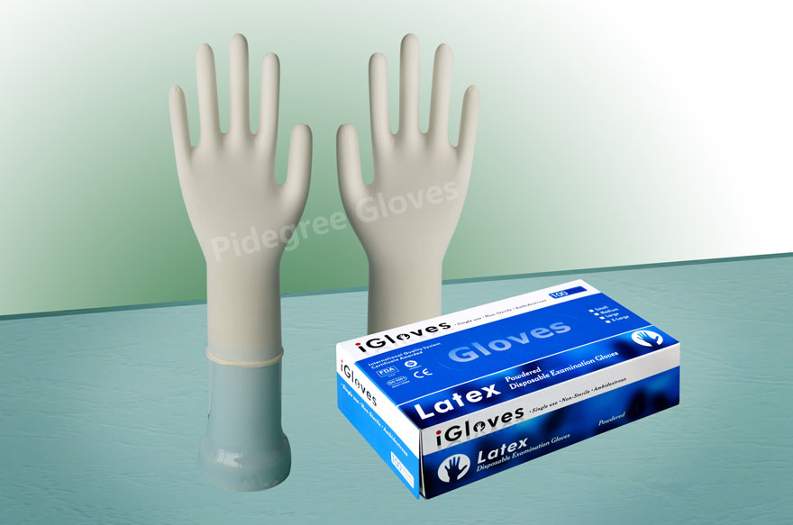 AQL 1.5 Powder Free Latex Exam Medical Gloves