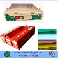 PP Plastic Blueberry Fruit Packing Box/Case/Container/ Tray