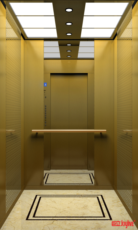 Joylive commercial passenger elevator for school/office building