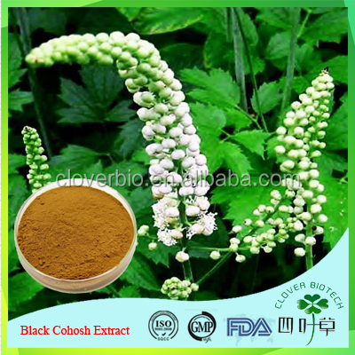GMP factory supply Black Cohosh Extract powder CAS NO 84776-26-1