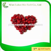 High quality cranberry extract powder, cranberry extract uti, cranberry powder extract