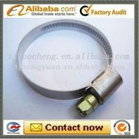 GM hose clamp pipe clips