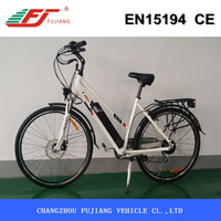 2015 newest classic 250W 2 seat electric bike with rear rack, city lady electric bike