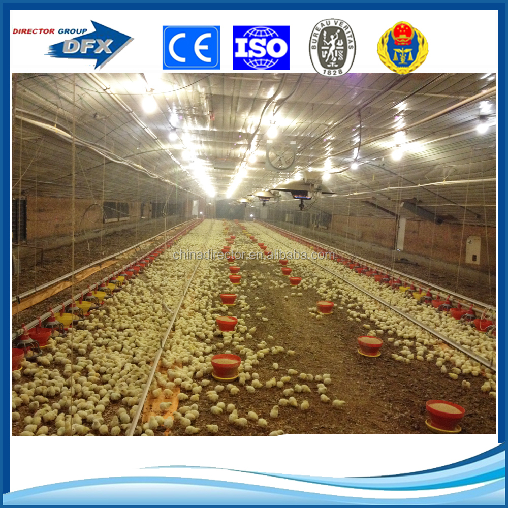 special design and produce wide span safe and durable prefabricated house/prefabricated poultry house