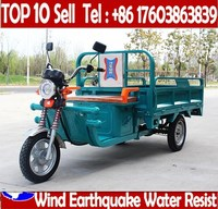 3 Wheel Electric Adult Hot Sell Delivery Three Motor Cargo Bike