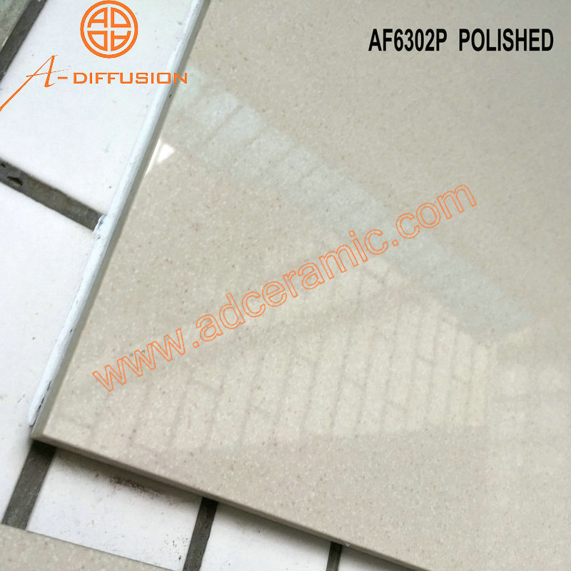 full body porcelain floor and tiles brand name polish matte rough