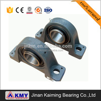 China Manufacturer Best Price Flanged Bearing P206 Pillow Block Bearing P207 P210