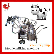 Dairy farm used cow milking machine for milking cows
