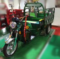 2016 Electric tricycle trike chopper cargo three wheel motorcycle