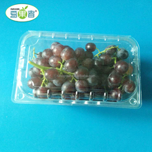 2017 the most influential disposable plastic food blueberry strawberry packing trays