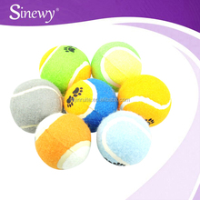 Dog Funny Toy Tennis Balls Run Fetch Throw Play Toy Chew Toys For Dogs