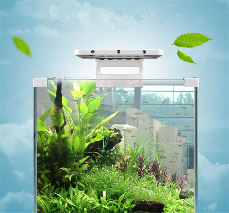 Eco smart aquarium tropical fish tank with led light water for Smart fish tank