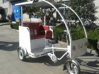 3 wheel tourist sightseeing tricycle with 3 passenger
