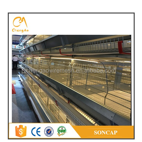 A H type chicken use poultry cage with automatic nipple drinking system