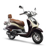 Ariic eec 125cc classic model retro scooter VENPAS-3