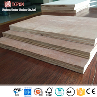 Marine Grade Construction Plywood Free Sample