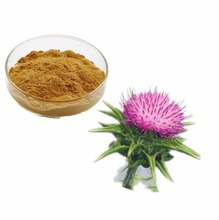 free sample ! China hot selling milk thistle extract powder 80 silymarin