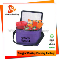 Non Woven Thermal Lined Cooler Carrier Bag